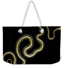 Boa Constrictor Skeleton Weekender Tote Bag by Bob Christopher