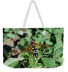 Weekender Tote Bag featuring the photograph Break Time by Thomas Woolworth