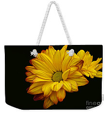 Bright And Brassy Weekender Tote Bag