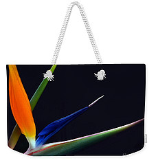 Bright Bird Of Paradise Rectangle Frame Weekender Tote Bag