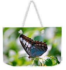 Weekender Tote Bag featuring the photograph Bright Blue Butterfly by Peggy Franz