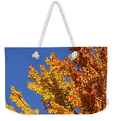 Brilliant Fall Color And Deep Blue Sky Weekender Tote Bag by Mick Anderson