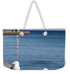 Weekender Tote Bag featuring the photograph Bronte Lighthouse Gulls by Laurel Best