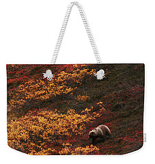 Brown Bear Denali National Park Weekender Tote Bag