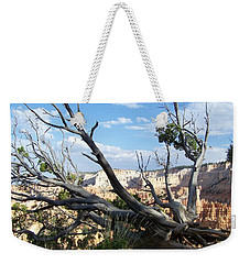 Weekender Tote Bag featuring the photograph Bryce Canyon by Dany Lison