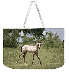 Buckskin Pony Weekender Tote Bag by Donna G Smith