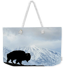 Weekender Tote Bag featuring the photograph Buffalo Suvived Another Yellowstone Winter by Dan Friend