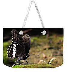 Weekender Tote Bag featuring the photograph Butterfly Feeding  by Ramabhadran Thirupattur