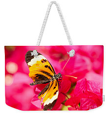 Weekender Tote Bag featuring the photograph Butterfly by Les Palenik