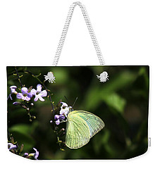 Weekender Tote Bag featuring the photograph Butterfly On Purple Flower by Ramabhadran Thirupattur
