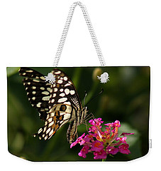 Weekender Tote Bag featuring the photograph Butterfly by Ramabhadran Thirupattur