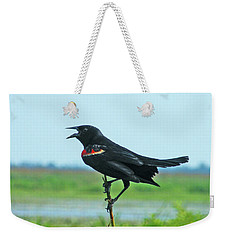 Bye Bye Blackbird Weekender Tote Bag by Lizi Beard-Ward