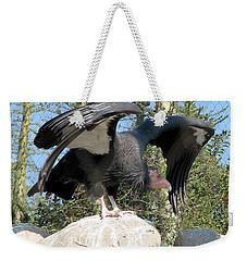 California Condor Weekender Tote Bag by Carla Parris