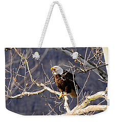Weekender Tote Bag featuring the photograph Calling For His Mate by Randall Branham