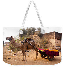 Weekender Tote Bag featuring the photograph Camel Yoked To A Decorated Cart Meant For Carrying Passengers In India by Ashish Agarwal