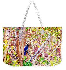 Canyon Jay  Weekender Tote Bag
