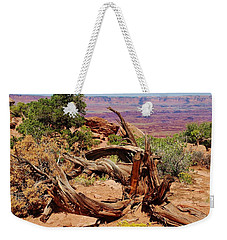 Weekender Tote Bag featuring the photograph Canyonlands 2 by Dany Lison