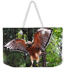 Weekender Tote Bag featuring the photograph Captivity by Lydia Holly