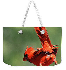 Cardinal-a Picture Is Worth A Thousand Words Weekender Tote Bag