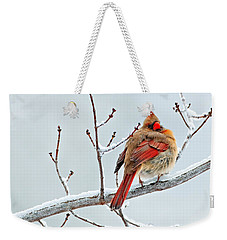 Cardinal I The Snow  Weekender Tote Bag