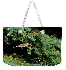 Weekender Tote Bag featuring the photograph Cardinal Just A Hop Away by Thomas Woolworth