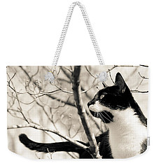 Cat In A Tree In Black And White Weekender Tote Bag