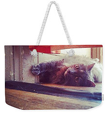 Catty Weekender Tote Bag