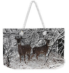 Weekender Tote Bag featuring the photograph Caught In The Snow Storm by Elizabeth Winter