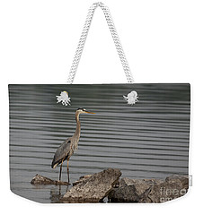 Cautious Weekender Tote Bag by Eunice Gibb