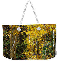Weekender Tote Bag featuring the photograph Changing Seasons by Vicki Pelham