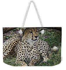 Cheetah Alert Weekender Tote Bag