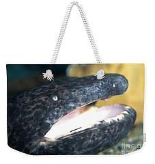 Chinese Giant Salamander Weekender Tote Bag by Dante Fenolio