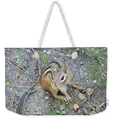 Weekender Tote Bag featuring the photograph Chipmunk Feast by Laurel Best