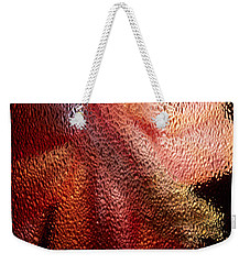 Weekender Tote Bag featuring the photograph Christmas Cactus by Sharon Elliott