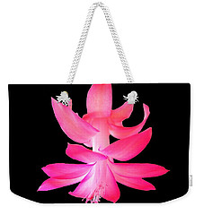 Christmas Cactus Weekender Tote Bag by Steven Clipperton