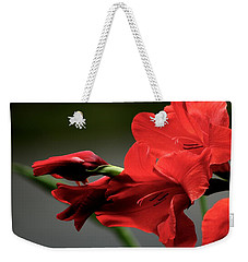 Chromatic Gladiola Weekender Tote Bag