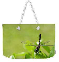 Weekender Tote Bag featuring the photograph Cleared For Take-off by Dan Wells