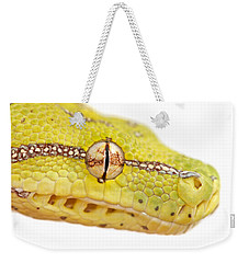 Close Up Of Green Tree Python Morelia Weekender Tote Bag