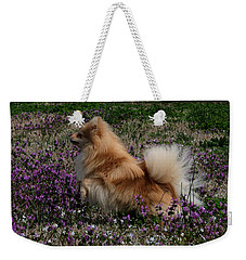 Weekender Tote Bag featuring the photograph Cody by Karen Harrison