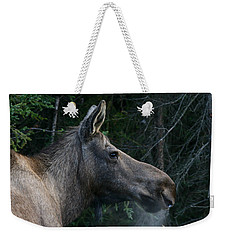 Weekender Tote Bag featuring the photograph Cold Morning by Doug Lloyd