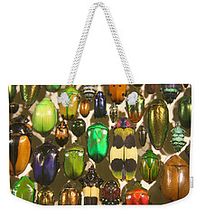 Weekender Tote Bag featuring the photograph Colorful Insects by Brooke T Ryan
