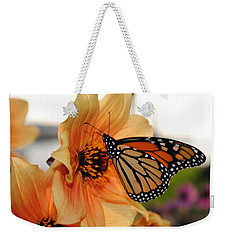 Weekender Tote Bag featuring the photograph Colors In Sync by Michael Frank Jr