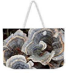 Weekender Tote Bag featuring the photograph Concentric by Todd Blanchard