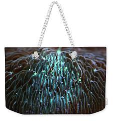 Coral 2 Weekender Tote Bag