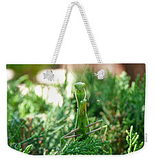 Weekender Tote Bag featuring the photograph Count Your Blessings by Tom Roderick