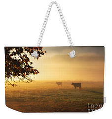 Cows In A Foggy Field Weekender Tote Bag