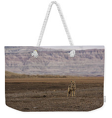 Coyote Badlands National Park Weekender Tote Bag