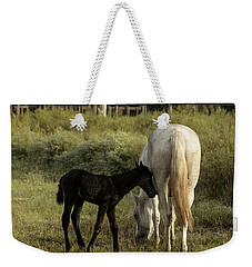 Cracker Foal And Mare Weekender Tote Bag by Lynn Palmer