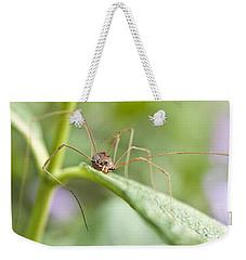 Creepy Crawly Spider Weekender Tote Bag
