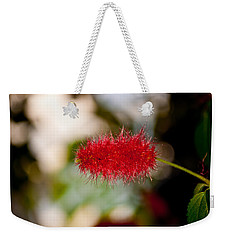 Weekender Tote Bag featuring the photograph Crimson Bottle Brush by Tikvah's Hope